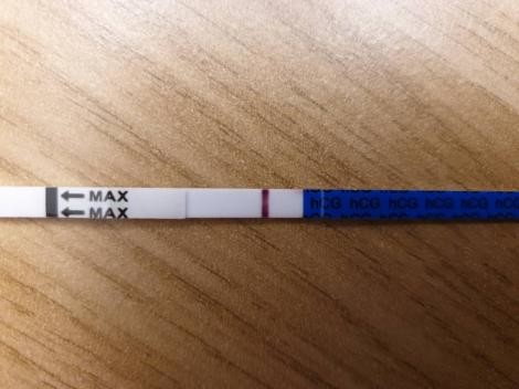 12 Dpo No Symptoms