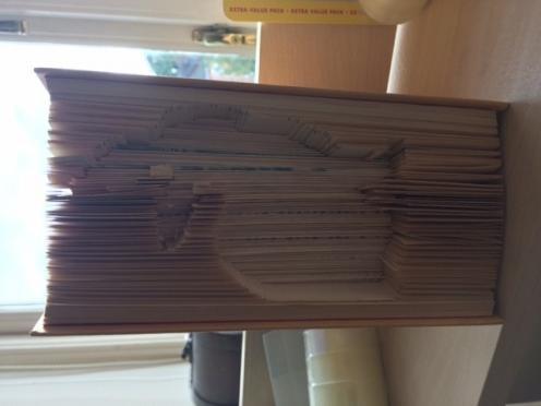 Name:  bunnybook.jpg Views: 238 Size:  17.7 KB