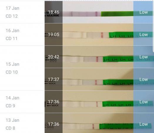 Screenshot_20190118-135659_Femometer.jpg