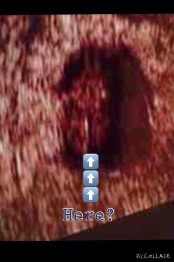 ImageUploadedByNetmums1413150444.585483.jpg