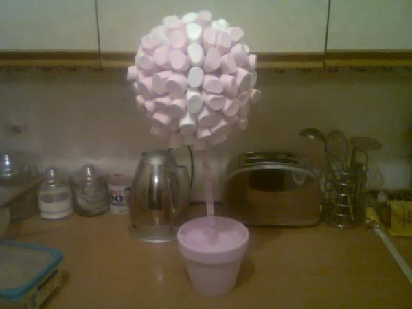 How to make a sweet/candy or lollypop tree-photo1383.jpg