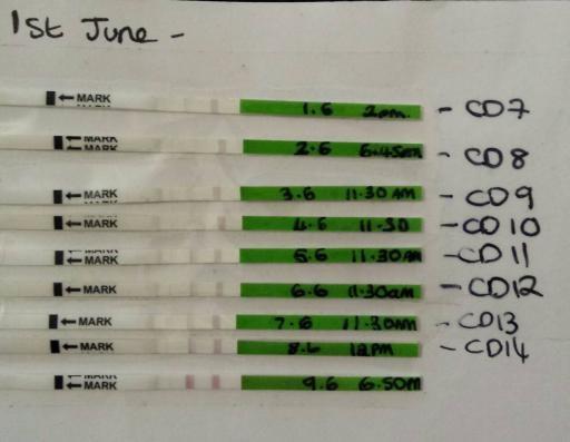 Positive opk 8 days after clomid