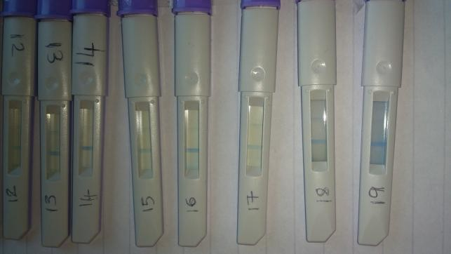 clear blue dual ovulation test instructions