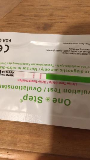 99BB0AC9-2DDB-4E6A-B560-4BAD42F9A900.jpg