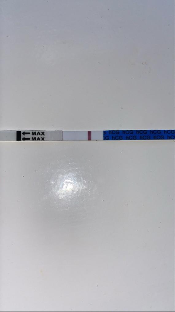 C49327E8-53B9-471A-973C-BCBA49DCAAAD