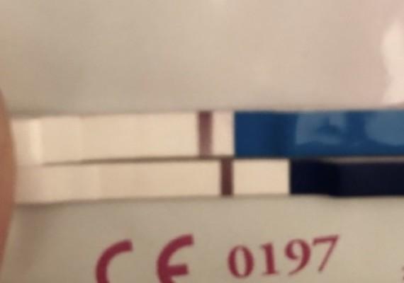 0ADA534D-AE1B-4CA3-8F27-F6D3A3809D68
