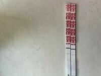 01D3A9CE-FE50-465D-98B2-1F4E6EBC9B5B